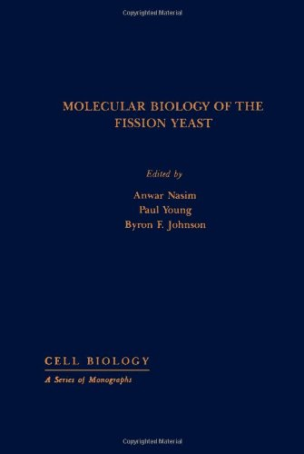 9780125140850: Molecular Biology of the Fission Yeast (Cell Biology)