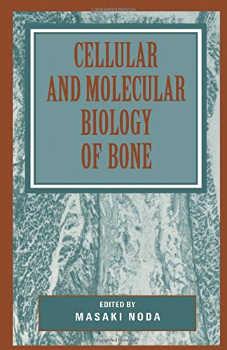 9780125202251: Cellular and Molecular Biology of Bone