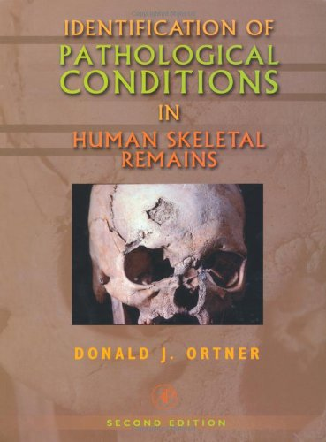 Identification of Pathological Conditions in Human Skeletal: Ortner, Donald J.