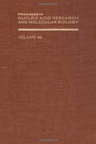 9780125400404: PROG NUCLEIC ACID RES&MOLECULAR BIO V40, Volume 40 (Progress in Nucleic Acid Reasearch)