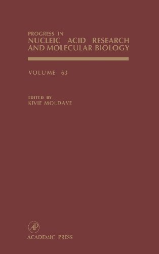 9780125400633: Progress in Nucleic Acid Research and Molecular Biology: 63 (Progress in Nucleic Acid Research & Molecular Biology)