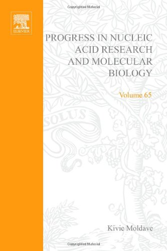 9780125400657: Progress in Nucleic Acid Research and Molecular Biology, Volume 65