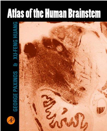 9780125476157: Atlas of the Human Brainstem