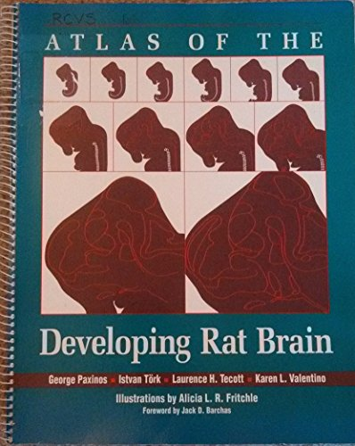 9780125476287: Atlas Of The Developing Rat Brain