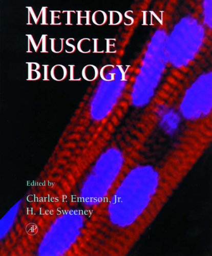 9780125641548: Methods in Cell Biology: Methods in Muscle Biology v.52: Methods in Muscle Biology Vol 52