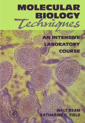 9780125839907: Molecular Biology Techniques: An Intensive Laboratory Course