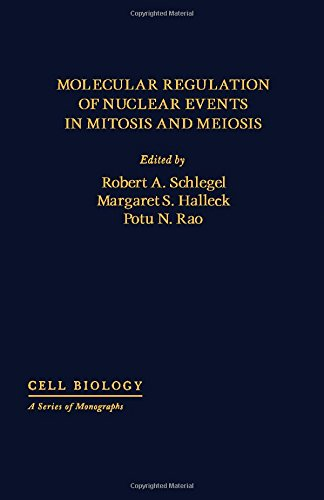 Molecular Regulation of Nuclear Events in Mitosis and Meiosis Cell Biology: A Series of Monographs