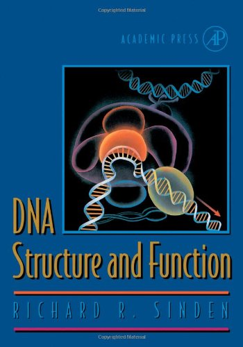 9780126457506: DNA Structure and Function