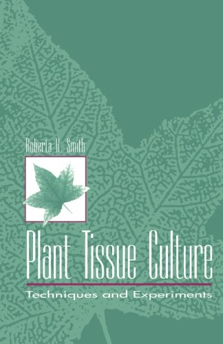 9780126503401: Plant Tissue Culture: Techniques and Experiments