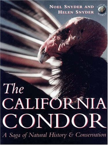 9780126540055: The California Condor: A Saga of Natural History and Conservation (Academic Press Natural World)