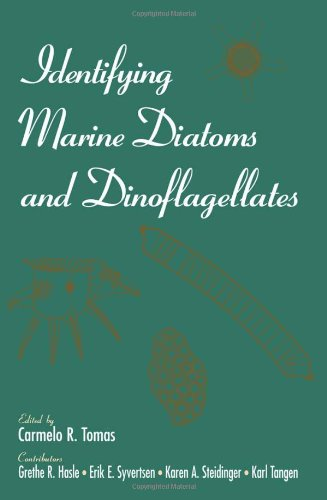 9780126930153: Identifying Marine Diatoms and Dinoflagellates