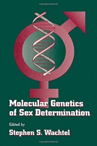 9780127289601: Molecular Genetics of Sex Determination