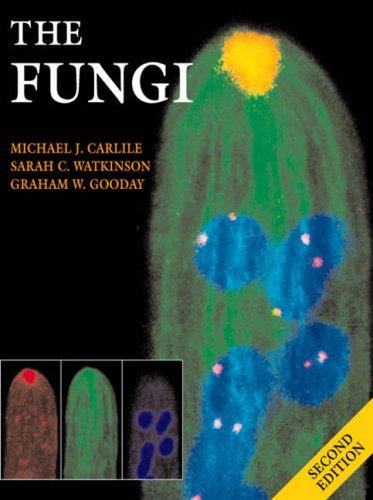 9780127384450: The Fungi, Second Edition