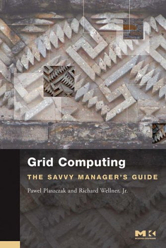 9780127425030: Grid Computing: The Savvy Manager's Guide (The Savvy Manager's Guides)