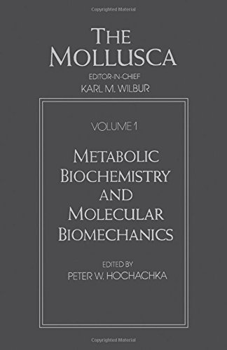 9780127514017: Mollusca: Metabolic Biochemistry and Molecular Biomechanics (Mollusca, Volume 1)