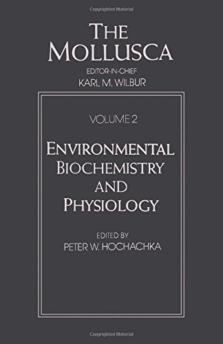 9780127514024: The Mollusca, Volume 2: Environmental Biochemistry and Physiology