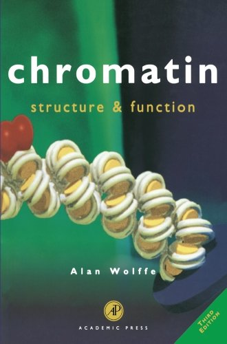 9780127619156: Chromatin, Third Edition: Structure and Function