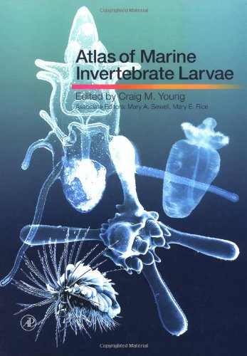 9780127731414: Atlas of Marine Invertebrate Larvae