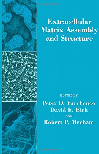 9780127751702: Extracellular Matrix Assembly and Structure (Biology of Extracellular Matrix)