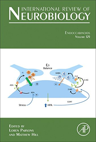 9780128012789: Endocannabinoids, Volume 125 (International Review of Neurobiology)