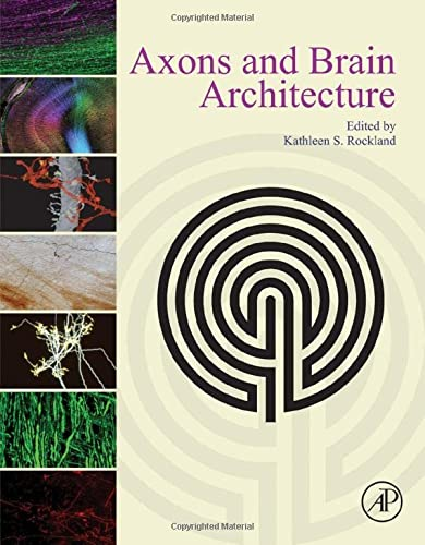 9780128013939: Axons and Brain Architecture