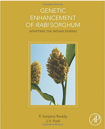 9780128019269: Genetic Enhancement of Rabi Sorghum: Adapting the Indian Durras