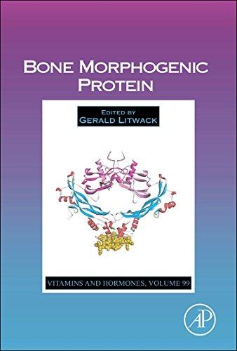 9780128024423: Bone Morphogenic Protein, Volume 99