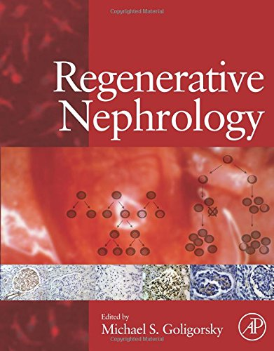 9780128101964: Regenerative Nephrology
