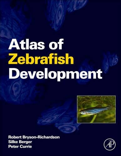 9780128103456: Atlas of Zebrafish Development