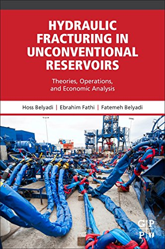 Hydraulic Fracturing in Unconventional Reservoirs: Theories, Operations, and Economic Analysis: ...
