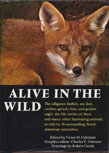 9780130221605: Alive in the Wild