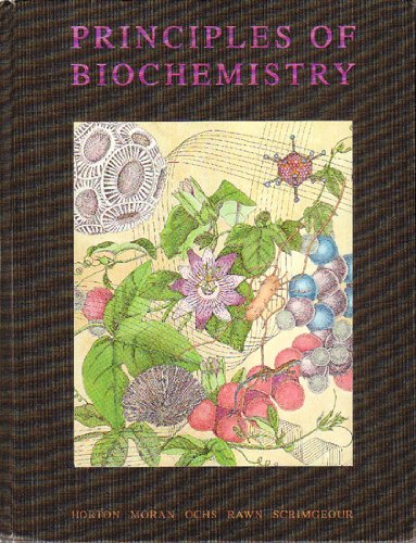 9780130424099: Principles of Biochemistry