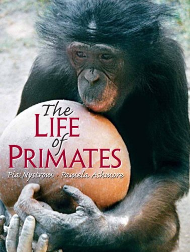 9780130488282: The Life of Primates: How Much Like Us?