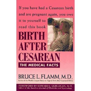 9780130801029: Birth After Cesarean: The Medical Facts