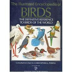 9780130836359: The Illustrated Encyclopedia of Birds: The Definitive Reference to Birds of the World