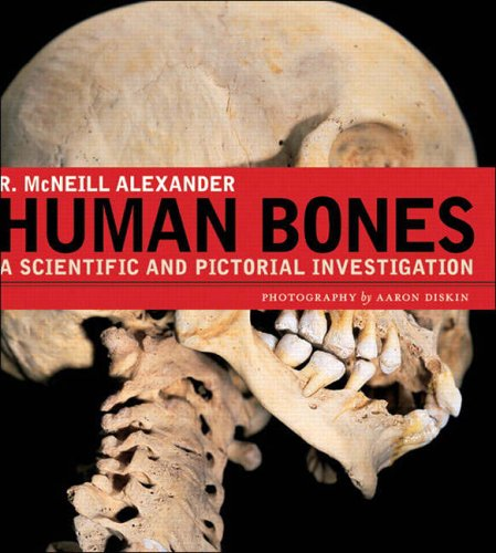 9780131479401: Human Bones: A Scientific and Pictorial Investigation