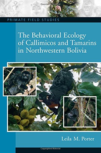 9780131914704: The Behavioral Ecology of Callimicos and Tamarins in Northwestern Bolivia (Primate Field Studies)