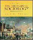 9780132310857: The Meaning of Sociology