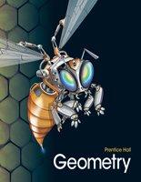 9780132518055: Geometry (New York)