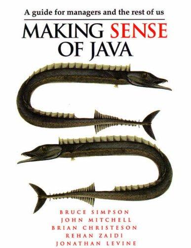 9780132632942: Making Sense of Java