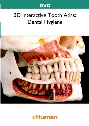 9780132742443: 3D Interactive Tooth Atlas
