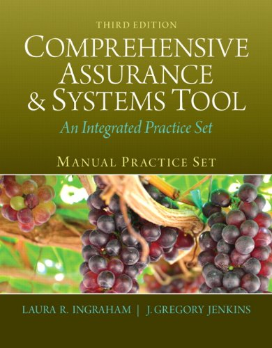 9780133252019: Manual Practice Set for Comprehensive Assurance & Systems Tool (CAST) (3rd Edition)