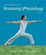 9780133481228: Fundamentals of Anatomy & Physiology