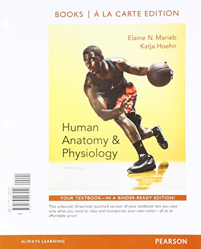 Mastering human anatomy