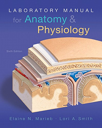 9780134206332: Laboratory Manual for Anatomy & Physiology (6th Edition) (Anatomy and Physiology)