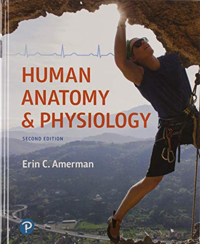 9780134702339: Human Anatomy & Physiology Plus Mastering A&P
