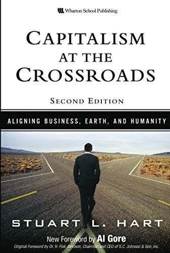9780136134398: Capitalism at the Crossroads: Aligning Business, Earth and Humanity