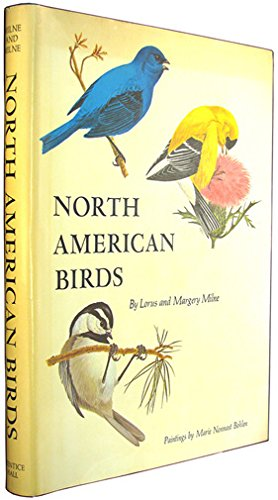 NORTH AMERICAN BIRDS
