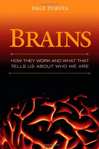 9780137055098: Brains: How They Seem to Work