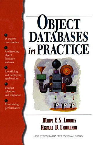Object Databases in Practice (HP Professional Series): Akmal B. Chaudhri,